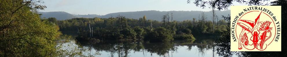 Site de l'association des naturalistes des Yvelines